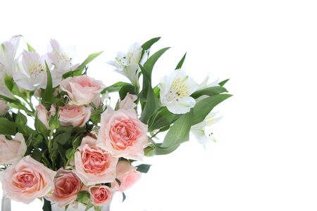 Bouquet of pink and white flowers on a white background photo