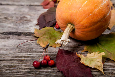 Pumpkins and fall leaves on an old wooden table Stock Photo