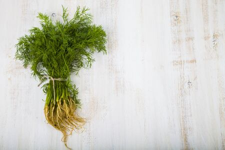 Fresh dill on a light wooden background. Herbs for cooking various dishes close up.
