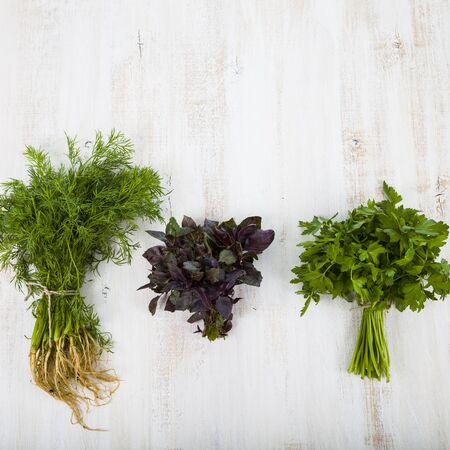 Parsley, dill and basil on a light wooden background. Spices and herbs  to prepare various dishes.