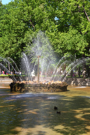 ST PETERSBURG, RUSSIA - AUGUST 2, 2015: Fountain The Sun at Pertergof Palace. The Petergof palace included in the UNESCOs World Heritage List. Editorial