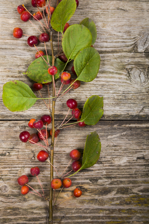 Autumn maple leaves and apples on an old wooden background