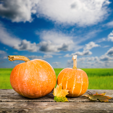 Pumpkins and fall leaves on a wooden table on the sky background