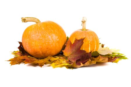 Pumpkins and fall leaves isolated on a white background