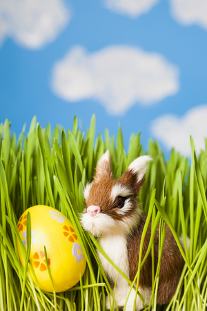 Easter still life with green grass, Easter eggs and a toy rabbit against the sky. Happy Easter. Easter greeting card.