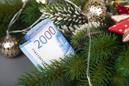 Money is hidden in the branches of a Christmas tree. New Year omen.