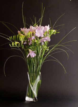 freesia flowers in vase Stock Photo