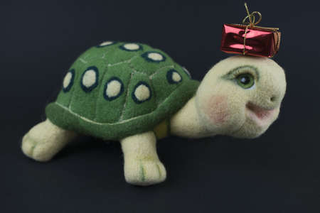 Turtle with gift Stock Photo