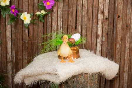 Easter eggs in copper bowl and baby duck photo