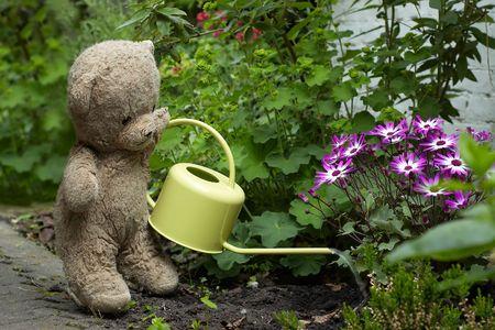 Teddy en el jardín regar las flores  Foto de archivo