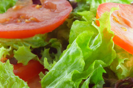 lettuces: green salad with tomatoes for backgrounds Stock Photo