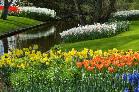 flower garden in spring photo