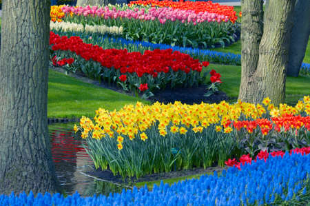 bunten Blumengarten im Frühjahr Standard-Bild