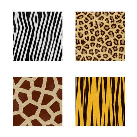 skins: four animal skins patterns Stock Photo