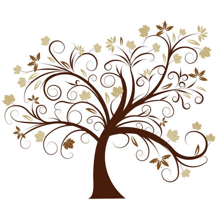 beautiful vector autumn tree design photo