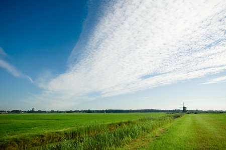 wide view of a dutch landscape and a winmill in the distance