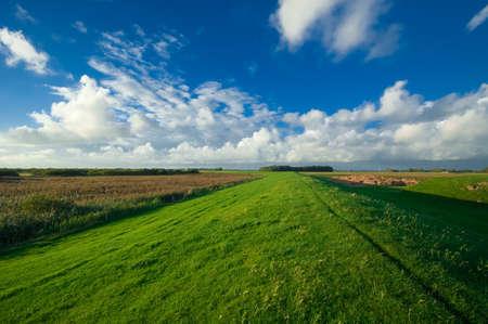 landsape: beautiful dutch farmland landsape