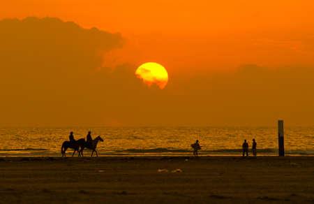 horseback riding on a beautiful night  photo