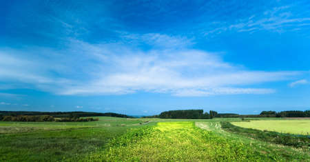 a summer landscape background Stock Photo - 1840908