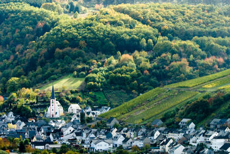 small village, vineyards and forest along the mosel river in germany Stock Photo - 1989851