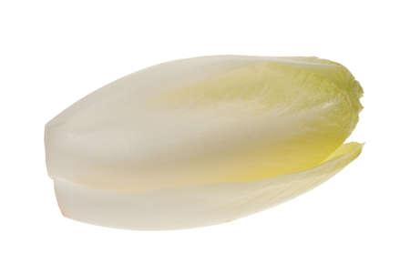 fresh endive isolated on a white background (Cichorium endivia) photo