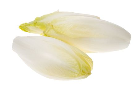 fresh endives isolated on a white background (Cichorium endivia) photo