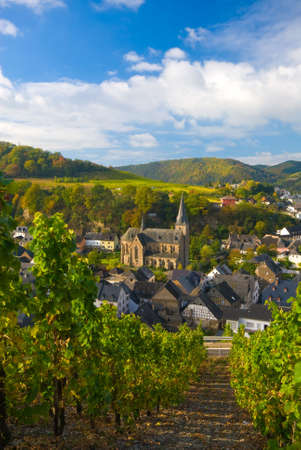 small village and vineyards along the mosel river in germany Stock Photo - 2185604