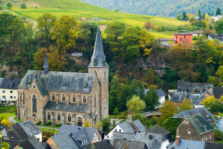 small village and vineyards along the mosel river in germany photo