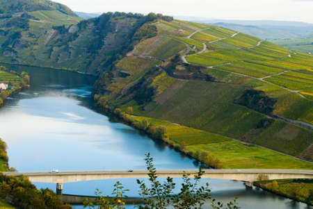bridge and  vineyards along the mosel river in germany photo