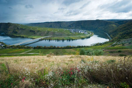 small village and vineyards along the mosel river in germany Stock Photo - 2185605