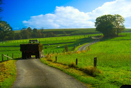 tractor with hay in a beautiful farmland landscape Stock Photo - 2276675