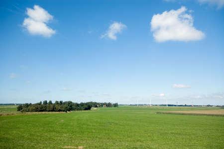 summer landscape background Stock Photo - 2530220