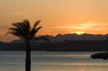 el sheikh: beautiful sunset in sharm el sheikh, egypt