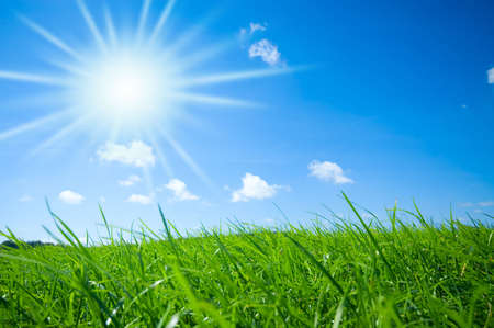 fresh green grass with bright blue sky and sunburst background photo