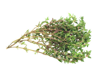 thyme: fresh thyme herb isolated on a white background Stock Photo