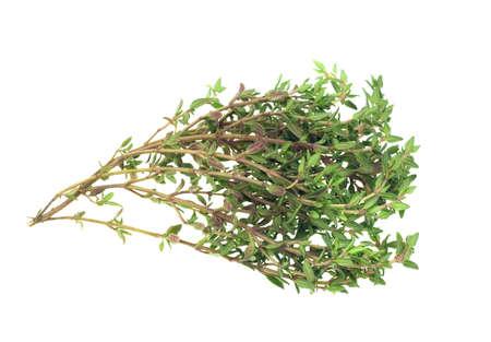 tomillo: tomillo fresco de hierbas aisladas sobre fondo blanco Foto de archivo