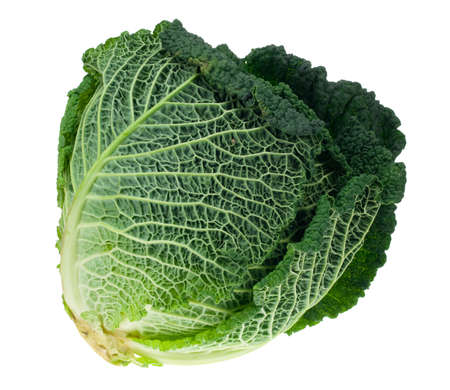 kale: fresh kale isolated on a white background Stock Photo