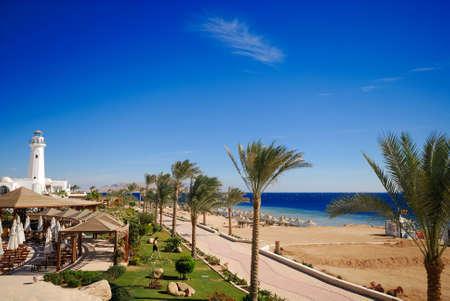 sheik: beautiful beach and ocean in sharm el sheikh, egypt