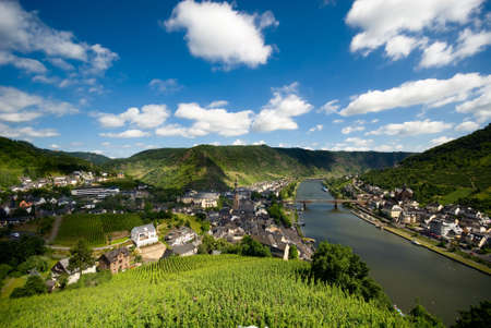 mosel: beautiful village with vineyards and forest along the mosel river in cochem germany