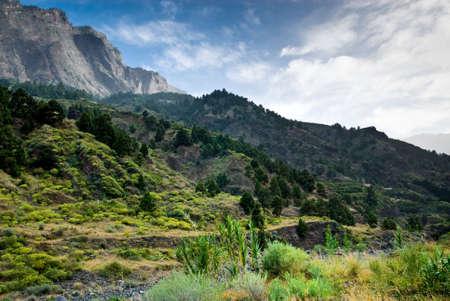 la: Caldera Taburiente in La Palma (Canary Islands) The largest erosion crater in the world