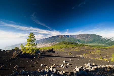 Schöne Vulkan Landschaft in La Palma Kanarische Inseln (el pilar)  Standard-Bild - 3877319