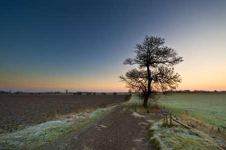 ijssel: sunrise in a dutch landscape (IJssel, Deventer, Netherlands)
