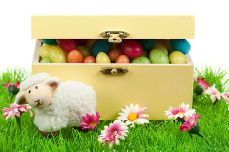 box of easter eggs and cute sheep in spring isolated on white  photo