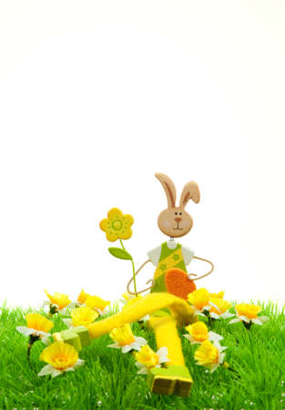cute easter bunny with on grass in spring photo