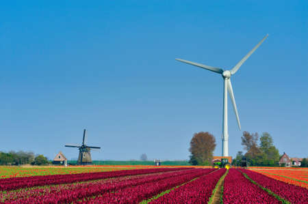 old windmill and new wind turbine in the Netherlands photo
