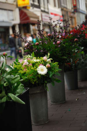 Flowers for sale in Amsterdam The Netherlands photo