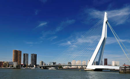Erasmus bridge in Rotterdam the Netherlands, Europe Foto de archivo