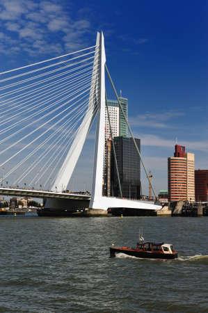 Most Erasmus w Rotterdamie, Holandia, Europa Zdjęcie Seryjne - 5522205