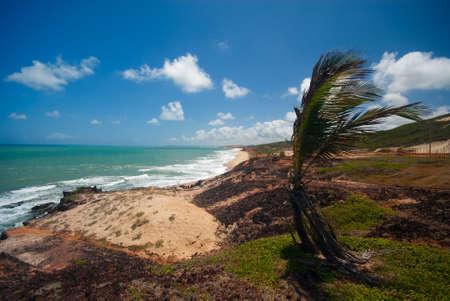 praia: Cliffs and beach at Praia das Minas near Pipa Brazil Stock Photo