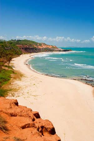praia: Beautiful beach with palm trees at Praia do Amor near Pipa Brazil Stock Photo